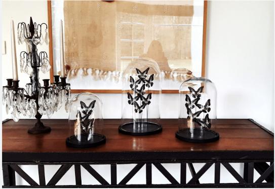 Belén Collection - Maisons de Mode Roubaix Vestiaire